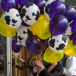 """Purple, Gold, and """"Holstein Cow"""" colored balloons for Reunion Parade 2017"""