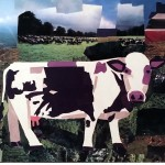 Graphic of a purple cow in a field. Copyright Megan Coyle